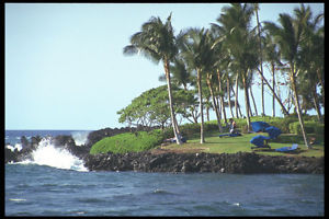 589006 Lava Flow And Resort Grounds Kohala Coast A4 Photo Print