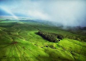 Art print POSTER Lush Countryside in North Kohala